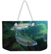 Rainbow Trout Oncorhynchus Mykiss Pair Weekender Tote Bag
