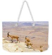 Ramon Crater Negev Israel Weekender Tote Bag