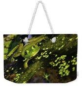 Rana Clamitans Or Green Frog Weekender Tote Bag