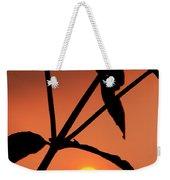 Raphael Sunset 1 Weekender Tote Bag
