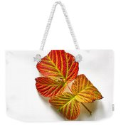 Raspberry Leaves In Autumn Weekender Tote Bag