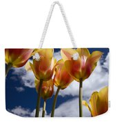 Reaching For The Clouds Weekender Tote Bag