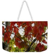 Red And Green Prior X-mas Weekender Tote Bag