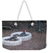 Red Bellied Woodpeckers Male And Female Weekender Tote Bag