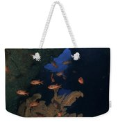 Red Bigeye Fish And Sea Fan In An Weekender Tote Bag by Mathieu Meur