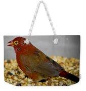 Red Billed Fire Finch Weekender Tote Bag