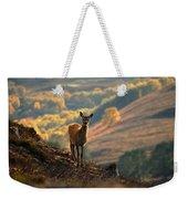 Red Deer Calf Weekender Tote Bag