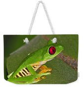 Red-eyed Leaf Frog Weekender Tote Bag by Tony Beck
