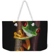 Red-eyed Tree Frog Agalychnis Callidryas Weekender Tote Bag