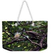 Red-eyed Vireo Feeding Cowbird Fledgling Weekender Tote Bag