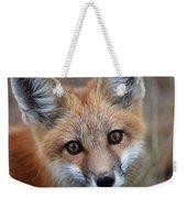 Red Fox 352 Weekender Tote Bag