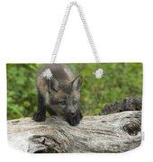 Red Fox Kit Weekender Tote Bag