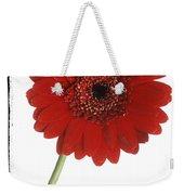 Red Gerber Daisy Weekender Tote Bag