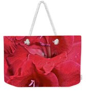 Red Gladiolus Weekender Tote Bag by Susan Herber