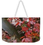 Red Grape Leaves And Beams Weekender Tote Bag