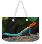 Red-headed Agama Weekender Tote Bag