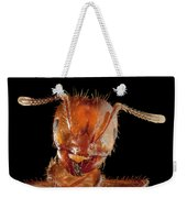 Red Imported Fire Ant Solenopsis Weekender Tote Bag
