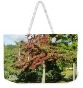 Red In Sunlight Weekender Tote Bag