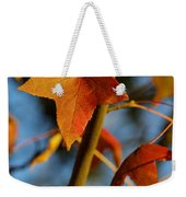 Red Leaves In Winter Sunset Weekender Tote Bag