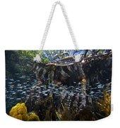 Red Mangrove Rhizophora Mangle Aerial Weekender Tote Bag