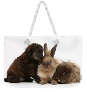 Red Merle Toy Poodle Pup, Guinea Pig Weekender Tote Bag