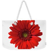 Red Mum In Striped Vase Weekender Tote Bag