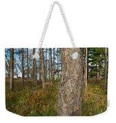 Red Pine Forest Weekender Tote Bag