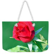 Red Rose With Star-shaped Collar Weekender Tote Bag