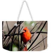 Red Royalty Weekender Tote Bag