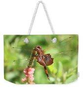 Red Saddlebag Dragonfly In The Marsh Weekender Tote Bag