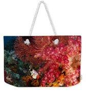 Red Sea Fan And Soft Coral In Raja Weekender Tote Bag