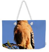 Pismo Beach Red Shoulder Hawk Weekender Tote Bag