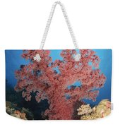 Red Soft Coral,  Australia Weekender Tote Bag