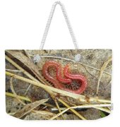 Red Soil Centipede - Strigamia Weekender Tote Bag