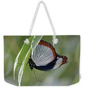 Red Spot Diadem Butterfly Weekender Tote Bag