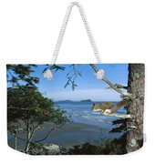Red Squirrel In Tree Weekender Tote Bag