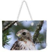 Red-tailed Hawk Has Superior Vision Weekender Tote Bag