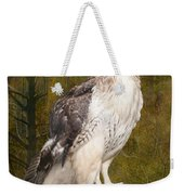 Red Tailed Hawk Perched On A Branch In The Woodlands Weekender Tote Bag