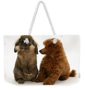 Red Toy Poodle Pup With A Lionhead Weekender Tote Bag