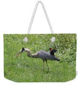 Red-winged Blackbird Attacking Great Blue Heron Weekender Tote Bag
