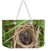 Red-winged Blackbird Baby In Nest Weekender Tote Bag by J McCombie