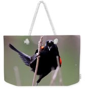 Red-winged Blackbird - Can You Hear Me Now Weekender Tote Bag