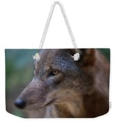 Red Wolf Stare Weekender Tote Bag