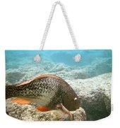 Redlip Parrotfish Weekender Tote Bag