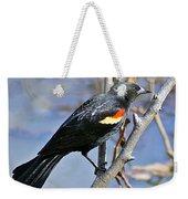 Redwinged Blackbird I Weekender Tote Bag