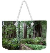 Redwood National Park, California Weekender Tote Bag