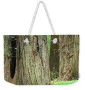 Redwood Trees Art Prints Big California Redwoods Weekender Tote Bag
