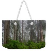 Redwoods In Breaking Mists Weekender Tote Bag