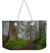 Redwoods Rising In Fog Weekender Tote Bag