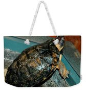 Reflecting Turtle Weekender Tote Bag